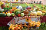 Подробнее: Праздник урожая и цветов